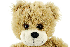 Teddy-bear Stock Image
