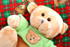 Teddy bear. Royalty Free Stock Images