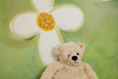 Teddy bear. A brown toy teddy bear sitting in front of a green background with white flower Stock Images