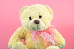 Teddy Bear 2. Sweet teddy in pink background Royalty Free Stock Photography