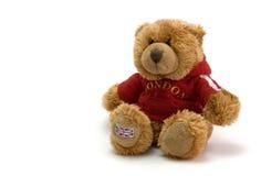 Teddy bear. Against white background stock photo