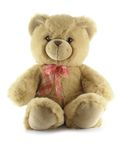 Teddy bear. Isolated over a white background stock photo