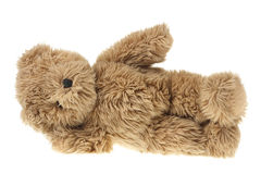 Teddy Bear Royalty Free Stock Photo