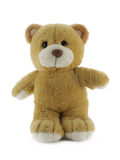 Teddy Bear. Standing Teddy Bear isolated over white background royalty free stock images