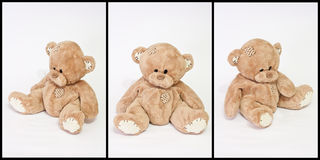 Teddy bear. Collage from three photos of teddy bear on white Royalty Free Stock Photo