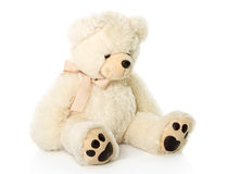 Teddy bear royalty free stock images