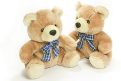 Teddy bear. Couple of classic teddy bear toy Royalty Free Stock Image