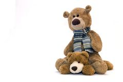 Teddy bear. My toy - Teddy bear over a white background Stock Image