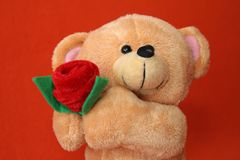 Teddy Bear 3 Royalty Free Stock Images