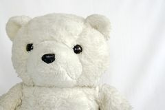 teddy bear Fotografia Stock