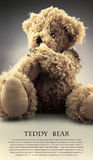 Teddy Bear Stockbild