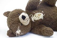 Teddy Bear arkivbild