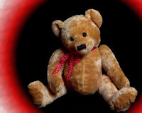 teddy bear fotografia royalty free