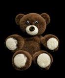 Teddy Bear Foto de Stock Royalty Free