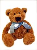 Teddy bear. Photo of a little teddy bear stock images