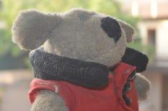 Teddy Bear Photographie stock libre de droits