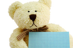 Teddy the Bear. Front view of teddy bear toy with a blank note, isolated on white background Stock Photos