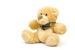 Teddy Bear Photo libre de droits