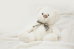 Teddy Bear Stock Afbeelding