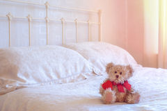 Teddy Bear Immagine Stock