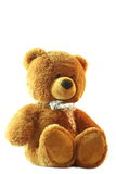 Teddy bear. A brown teddy bear on the white background, isolated Royalty Free Stock Image