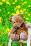 Teddy bear. The teddy bear sitting on  the shelf. shoot it in a garden Stock Photo