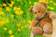 Teddy bear. The teddy bear sitting on  the shelf in a garden Stock Image