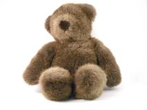 Teddy bear. Dark brown Teddybear on a white background Stock Photography