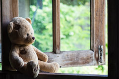 Teddy Bear Stockbilder