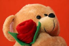 Teddy Bear 6 Royalty Free Stock Images