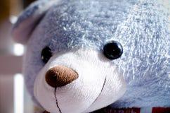 Teddy Bear Immagini Stock