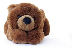teddy bear Obrazy Royalty Free