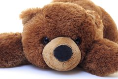 Teddy Bear. Over a white background Stock Photo