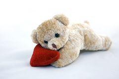 Teddy bear. With hear lying on white background Royalty Free Stock Photography