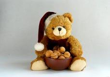 Teddy Bear Immagine Stock Libera da Diritti