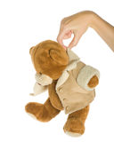 Teddy bear. In hand. Isolated on white stock photography