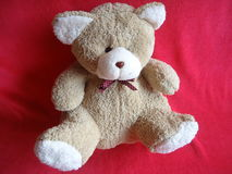 Teddy Bear lizenzfreies stockfoto