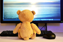 Teddy Bear Fotos de Stock Royalty Free