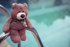 Teddy Bear Stockfotos