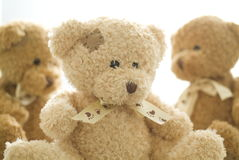 Free Teddy Bear Stock Image - 8244071
