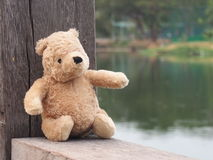 Teddy Bear Photographie stock