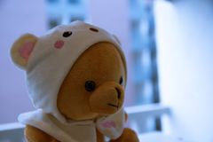 Teddy Bear Foto de Stock