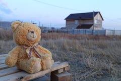 Teddy Bear Stock Afbeeldingen