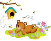 Teddy bear admiring beehive Royalty Free Stock Images