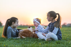 Teddy bear. Adorable little girls with her teddy bear friend in the park on sunset Royalty Free Stock Photo