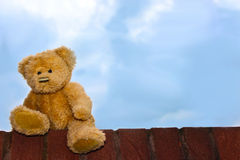 Teddy bear against a blue sky Stock Image