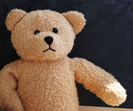 Teddy bear alone Stock Images