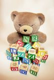 Teddy Bear with Alphabet Blocks Stock Photos