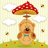Teddy bear with amanita Royalty Free Stock Photos