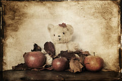 Teddy bear and apples Stock Image